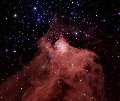 Obraz mgławicy Cephesu B. Dane z Chandry prezentuje kolor fioletowy, a ze Spiztera - czerwony, niebieski i zielony. Cred NASA/CXC/PSU/K. Getman et al, NASA/JPL-Caltech/CfA/J. Wang et al.