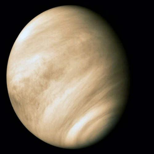 Wenus (NASA)