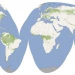 Pierwsza globalna mapa wysokości drzewostanu (Credits: NASA - Public Domain)