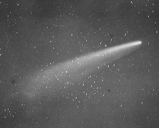 Zdjęcie Wielkiej Komety z 1882 roku wykonane przez Sir Davida Gilla (Sir David Gill, 1843-1914)