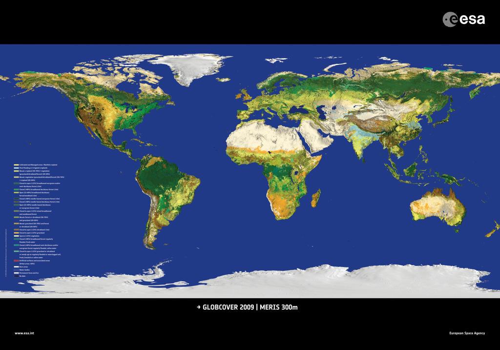 Najdokładniejsza mapa świata z uwzględnieniem rodzaju wegetacji / Credits: ESA