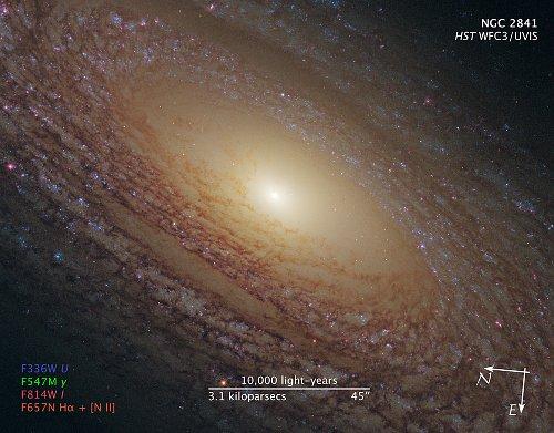 Odległości w galaktyce NGC 2841 / Credits - NASA, ESA, and the Hubble Heritage (STScI/AURA)-ESA/Hubble Collaboration