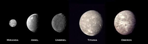 Pięć księżyców Urana stanowi interesujący cel dla misji eksploracyjnej, choć do zastosowania w manewrach asysty grawitacyjnej nadają się tylko cztery największe (NASA)
