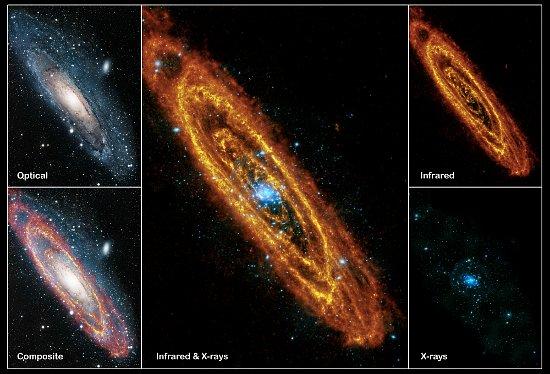 Galaktyka M31 na różnych zakresach fal / Credits - NASA, ESA