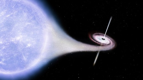Wizja artysty: Cygnus X-1 pożera pobliską gwiazdę