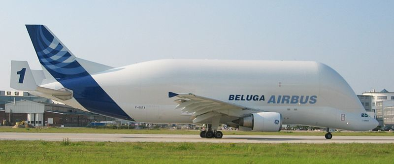 Airbus A300-600 Super Transporter, tzw. Beluga / Credits: wikipedia