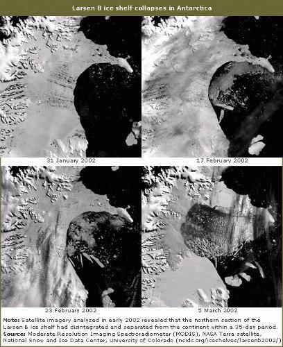 Kolejne zdjęcia przedstawiają gwałtowny rozpad lodowca Larsen B w 2002 roku. Uzyskano je za pomocą instrumentu MODIS (Moderate Resolution Imaging Spectroradiometer) satelity Terra należącej do NASA.