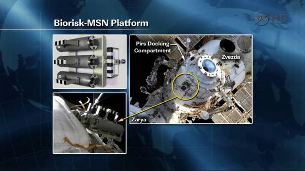 Miejsce instalacji eksperymentu Biorisk / Credits: jmvh, NASA TV