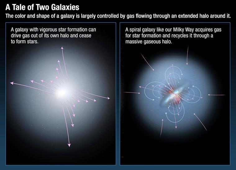 """Schemat """"recyklingu"""" galaktycznego. Promieniowanie docierające do nas od odległych kwazarów ulega modyfikacji, gdy przelatuje przez halo galaktyczne  /  Credit – NASA; ESA; A. Feild, STScI"""