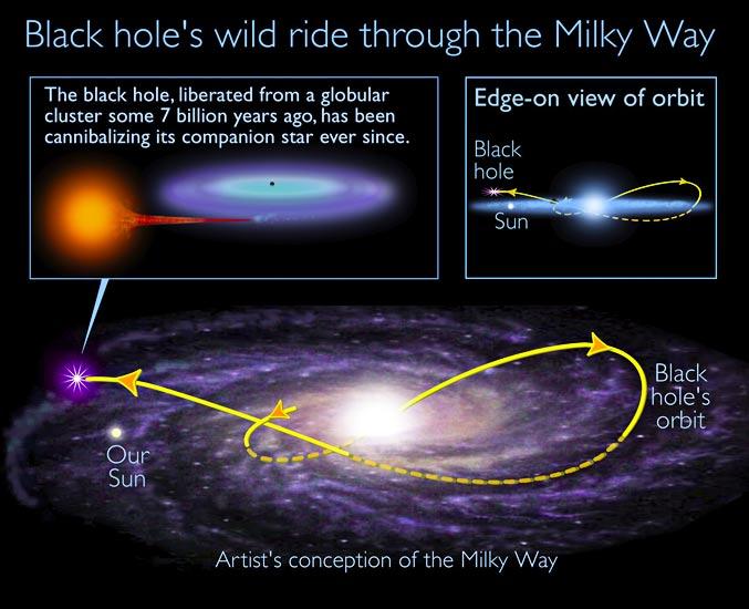 XTE J1118+480 po wyrzuceniu z gromady gwiezdnej podróżuje przez Galaktykę wchłaniając swojego towarzysza  /  Credit - I. Rodrigues and I.F. Mirabel, NRAO/AUI/NSF