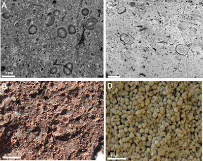 Zdjęcia przedstawiają skały wulkaniczne i powstałe w wyniku impaktu meteorytu. Po lewej szczątki z krateru uderzeniowego, po prawej skały wulkaniczne. Dwa górne zdjęcia ukazują lapille, a dwa dolne granulki powstałe z pyłu. (Image credit: From Branney and Brown 2011 (Journal of Geology 199, 275-292))