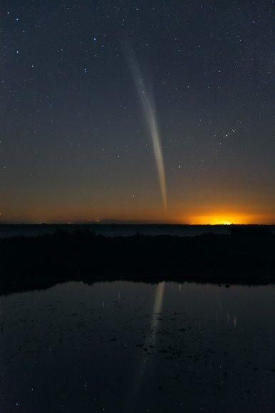 Kometa Lovejoy na porannym niebie / Credits - Colin Legg