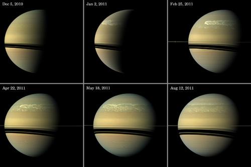 """Kompozycja zdjęć przedstawiająca rozrost burzy na Saturnie. W lewym górnym rogu zdjęcie burzy z 5 grudnia 2010 roku. Burza jest jeszcze niewielką """"plamą"""" na północnej półkuli przy terminatorze. Kolejne ujęcie, z 2 stycznia 2011 roku przedstawia ogon burzy, z wiatrami i chmurami tworzącymi fraktalne kształty. Zdjęcie z 25 marca 2011 roku wyraźniej przedstawia zasięg oddziaływania zjawiska atmosferycznego, które osiągnęło szerokość 15 000 kilometrów. W kwietniu, 22 dnia tego miesiąca (lewy dolny róg) ogon znacznie rozszerzył się na południe. Na kolejnym zdjęciu, głowa burzy wciąż nie jest połączona z ogonem, choć znajduje się na niewidocznej stronie planety. Między 18 maja a 12 sierpnia 2011 roku, głowa połączyła się z ogonem, przez co oba twory straciły swoją indywidualność. Zdjęcia z 25 lutego oraz 12 sierpnia 2011 roku pozyskano w prawdziwych barwach. Pozostałe są zbliżone do kolorów rzeczywistych. (Credits: NASA/JPL-Caltech/Space Science Institute)"""