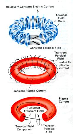 Rozkład pola magnetycznego ograniczającego plazmę / Credits: Wikipedia