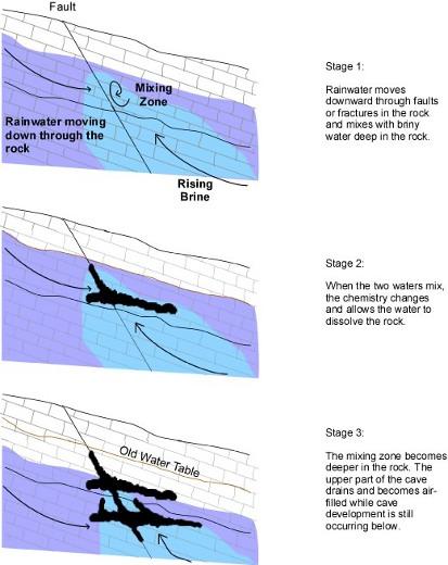 Ilustracja przedstawia poszczególne fazy tworzenia się jaskini hypogenicznej. Na początku, woda deszczowa przesączająca się przez warstwę skał miesza się z warstwą słonej wody uwięzionej w głęboko pod powierzchnią. Kolejnym krokiem są reakcje chemiczne zachodzące pod wpływem mieszania się dwóch różnych wód. Powodują one erozję otaczającej skały. Poziom wody słonej obniża się, a jaskinia drążona jest cały czas głębiej. Przy sprzyjających okolicznościach, możliwe jest zupełne odcięcie takiej jaskini od świata zewnętrznego, tak jak w przypadku jaskini Lechuguilla. Wtedy nie tworzy się do niej dojście na skutek erozji wyższych warstw skały (położonych nad jaskinią). (Credits: cave-exploring.com)
