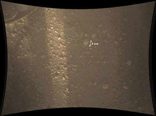 Zdjęcie przedstawiające drobne kamyki w rejonie łazika (z nałożoną podziałką ilustrującą rozmiar) (JPL/NASA)