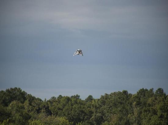 Prototypowy lądownik NASA (Mighty Eagle) w czasie lotu swobodnego / Credits: NASA/MSFC/Fred Deaton