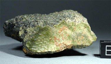 Jeden z okazów meteorytu NWA 7325 / Credits - Stefan Ralew