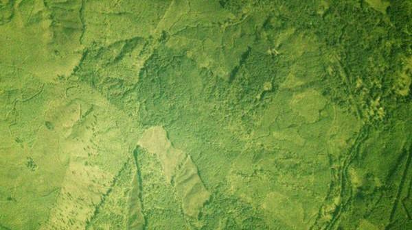 Przykładowe zdjęcie z satelity Dove-1 firmy Planet Labs / Credits: Planet Labs