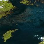Sinice na Bałtyku okiem Suomi NPP / Credits - NOAA