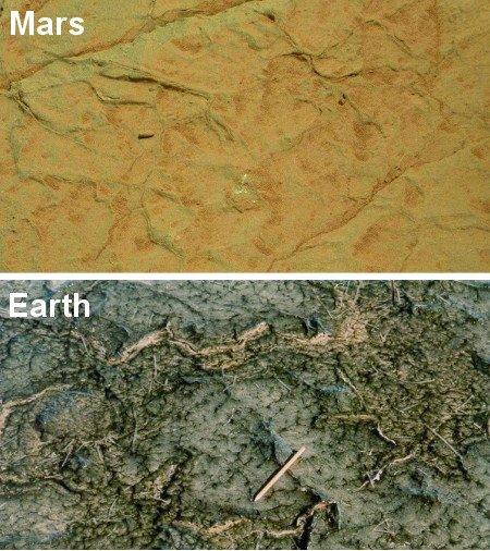 Porównanie szczelin w Gillespie Lake na Marsie i współczesnej maty bakteryjnej w Bahar Alouane, Tunezja. Credits Mars image: NASA; Earth image: Nora Noffke
