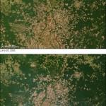 Zestawienie zdjęć instrumentu MODIS satelity Terra przedstawia las tropikalny w rejonie Mato Grosso w Brazylii. Dolne zdjęcie to dane z 2002 roku, górne - z 2006 roku. Część ubytków leśnych i przekształcenie terenów na pola uprawne to zamierzone działania państwa, a część związana jest z nielegalną wycinką. Władze Brazylii wykorzystują zdjęcia satelitarne tego typu do kontrolowania i przeciwdziałania tego typu akcjom. (Image Credits: NASA, MODIS Rapid Response Team).
