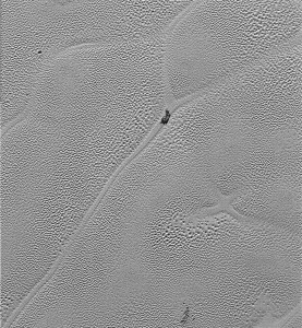 "Obszary ""X"" i ""Y"" na Plutonie / Credits -  NASA/JHUAPL/SwRI"