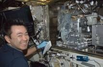 Astronauta JAXA Akihiko Hoshide przy Wodnym Habitacie na module Kibo MSK. W habitacie przeprowadzane są eksperymenty na ryżówkach japońskich (medaka). Credits: NASA