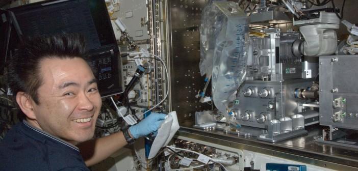 Kosmiczny połów odpowiedzią na utratę masy kostnej w mikrograwitacji