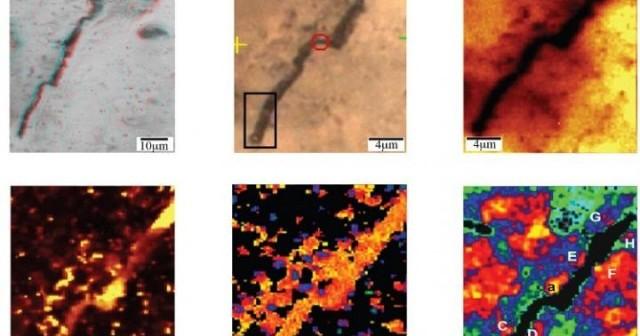 Zdjęcie przedstawia mikrostrukturę Eoleptonema apex opisaną w tekście jako najstarsze skamieniałości żywych organizmów, jednakże aktualnie toczy się na ten temat debata i prawdopodobne powstanie tych obiektów ma raczej związek z procesami nieorganicznymi. Credits: Dina Bower/Anrew Steele