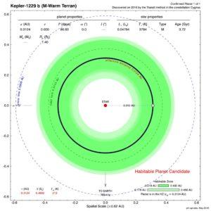 Położenie orbity Keplera-1229 wewnątrz ekosfery swojej gwiazdy / Credits - PHL Arecibo