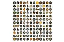 Różne zidentyfikowane próbki mikrometeorytów / Credits - Project Stardust