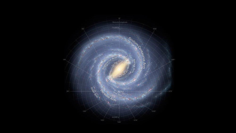Grafika prezentująca prawdopodobny wygląd naszej Drogi Mlecznej / Credits - NASA/Adler/U. Chicago/Wesleyan/JPL-Caltech