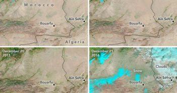 Porównanie Sahary w grudniu od 2013 do 2016 roku w regionie Ain Sefra / Credits - NASA Earth Observatory, U.S. Geological Survey, LANCE/EOSDIS Rapid Response