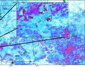Satelity pomagają przewidzieć plagi szarańczy