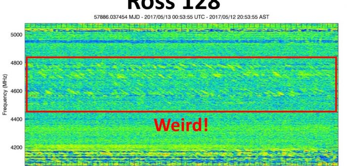 """Weird Signal"" Ross 128 / Credits - PHL @ UPR Arecibo"