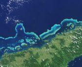 Bielenie Wielkiej Rafy Koralowej