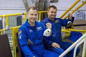 Załoga Sojuza MS-10 przed startem / Credits - NASA