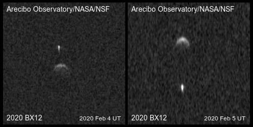 Obrazy radarowe 2020 BX12 / Credits - Arecibo Observatory/NASA/NSF