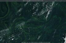 Zakwit sinic na Bałtyku - 18 sierpnia 2020 / Credits - UE, Copernicus, Sentinel Hub
