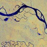 Wycinek Amazonki okiem satelity Sentinel-1 - 3 marca 2019 / Credits - modified Copernicus Sentinel data (2019), processed by ESA, CC BY-SA 3.0 IGO