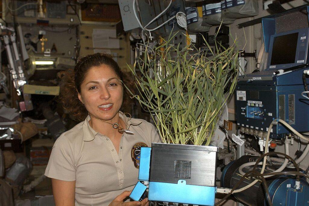 Anoshueh Ansari na ISS (zdjęcie: NASA).